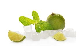 Lime with mint and ice cubes Stock Photos