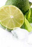Lime, mint and ice Stock Photos