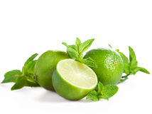 Lime and mint isolated Royalty Free Stock Photo