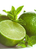 Lime and mint isolated Stock Images