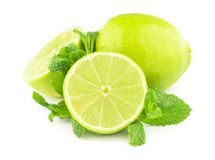 Lime and mint isolated on white Royalty Free Stock Images