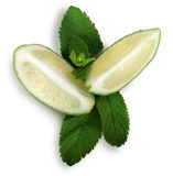 Lime and mint leaves Royalty Free Stock Image