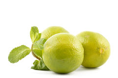 Lime with mint leaves Stock Image
