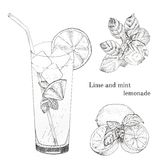 Lime and mint lemonade ink sketch set. Isolated design elements Royalty Free Stock Images