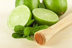 Lime, mint and muddler Royalty Free Stock Image