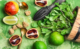 Lime,mint and orange Stock Photography