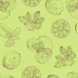 Lime and mint seamless pattern Stock Photo