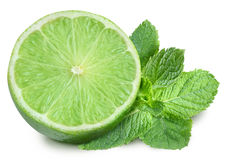 Lime and mint on a white background. Stock Photo