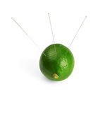 Lime and needle. Lime with acupuncture needles isolated on white background Stock Photography