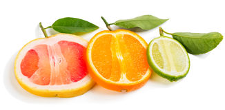 Lime, orange and grapefruit. Royalty Free Stock Photo