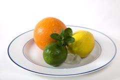 Lime, orange, lemon, mint. On the plate Stock Images