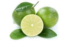 Lime organic fruits isolated on white Stock Photography