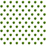 Lime pattern with white backdrop Royalty Free Stock Image