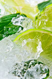 Lime and peppermint Stock Photo
