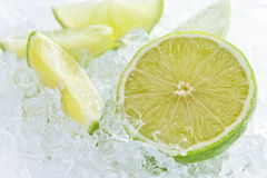 Lime pieces mixed with ice Royalty Free Stock Images