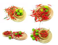 Lime and red chilies Royalty Free Stock Photos