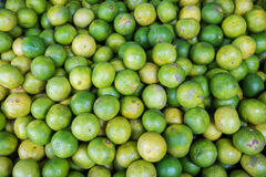 Lime for sale at market Royalty Free Stock Images