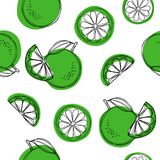 Lime seamless pattern. labels and background in trendy linear style. vector illustration