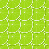 Lime Seamless Pattern Royalty Free Stock Photo