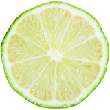Lime slice. Isolated on white background stock image