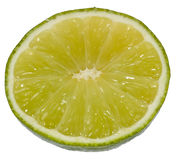 Lime slice Stock Images