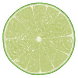 Lime Slice. Image of lime slice against a white background Stock Image