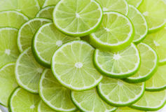 Lime slice background Stock Photography