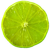 Lime slice Royalty Free Stock Images