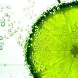 Lime Slice in Clear Fizzy Water Bubble Royalty Free Stock Photo