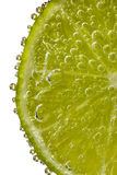 Lime Slice Covered in Bubbles Royalty Free Stock Images