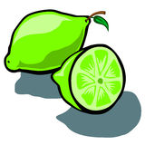 Lime and Slice Stock Photos