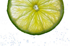 Lime slice falling or dipping in water Royalty Free Stock Photo