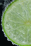 Lime slice falling into water Royalty Free Stock Photo