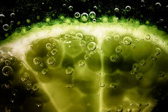Lime slice in fizzy water Royalty Free Stock Photo