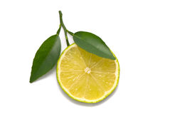 Lime slice with fresh leaves Stock Photo