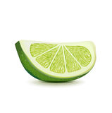 Lime slice isolade on white Stock Images