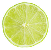 Lime slice isolated on white background Stock Photography