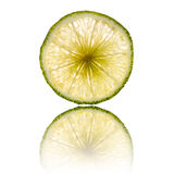Lime slice isolated on white background back lighted Stock Images
