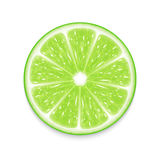 Lime slice Royalty Free Stock Photography