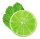 Lime slice with mint leaves isolated on the white background Stock Image