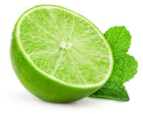 Lime slice with mint leaves isolated on the white background Stock Photos