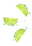 Lime slice with splashes isolated on white background. royalty free illustration