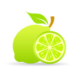 Lime slice vector icon Royalty Free Stock Photography