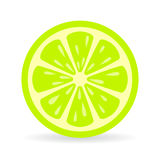 Lime slice vector icon Royalty Free Stock Photos