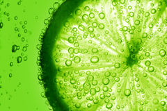 Lime slice in water. Bubbles Stock Photos