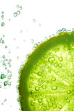 Lime slice in water. Bubbles Royalty Free Stock Photo