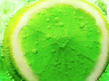 Lime slice in water bubbles Stock Image