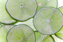 Lime slices. Arranged lime slices to serve as a background, backlit Stock Photography