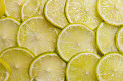 Lime slices Stock Image