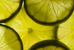 Lime slices. Many of fresh lime slices Royalty Free Stock Photos